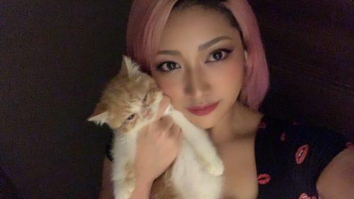 木村花の自殺の原因である誹謗中傷なアンチコメントやツイッターの画像や内容一覧